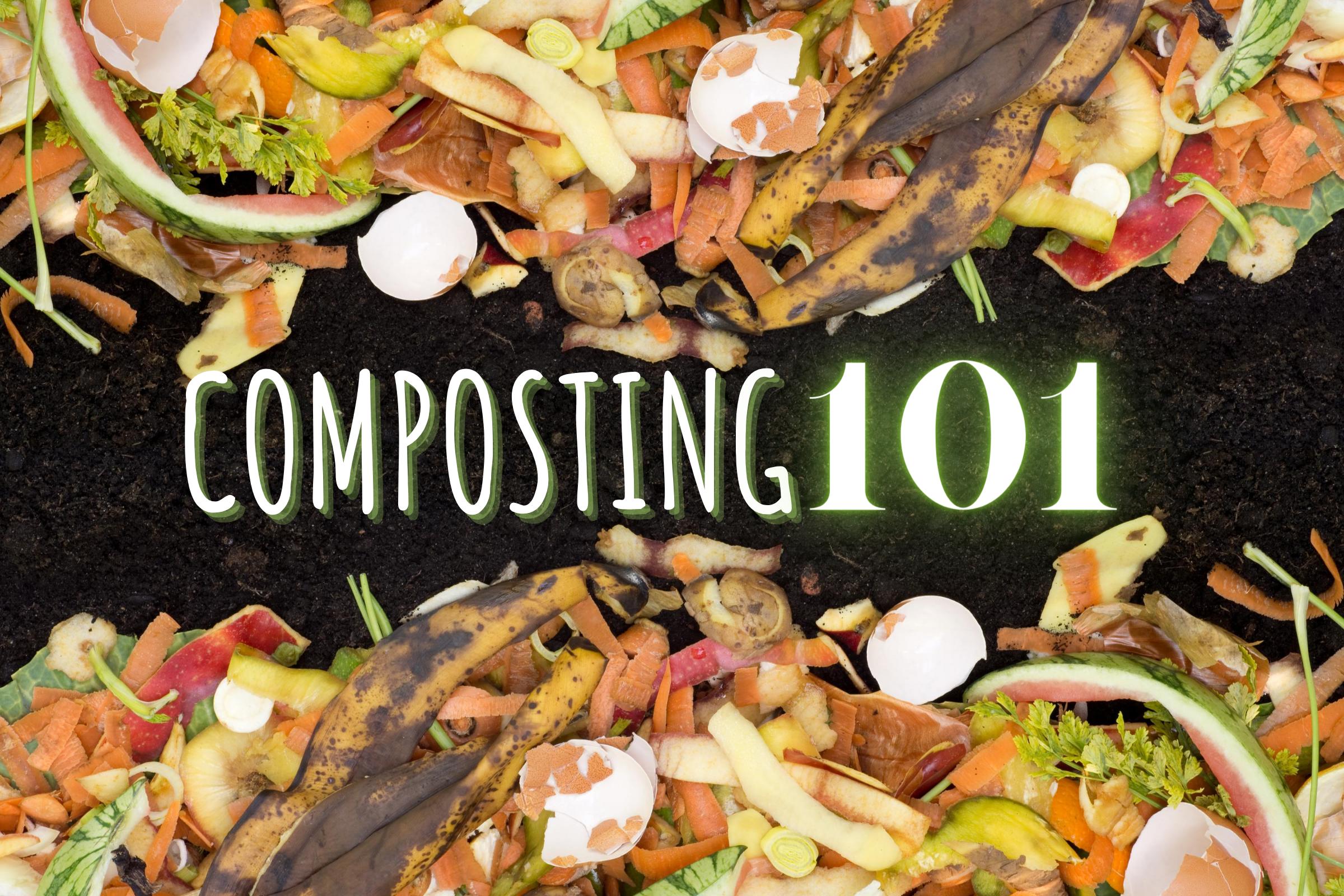 Composting 101—Start Composting Today!