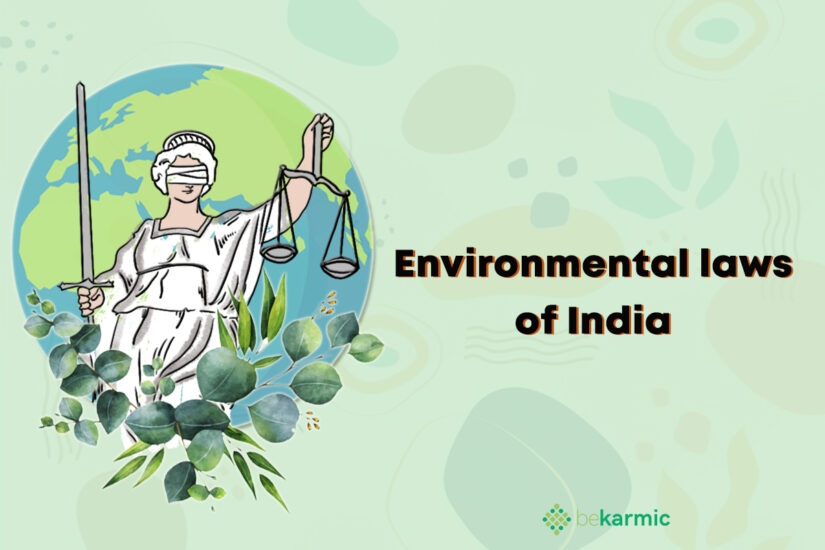 Environmental Laws: You Must Know