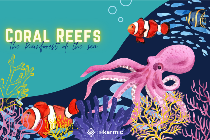 Coral Reefs: Save them before its too late