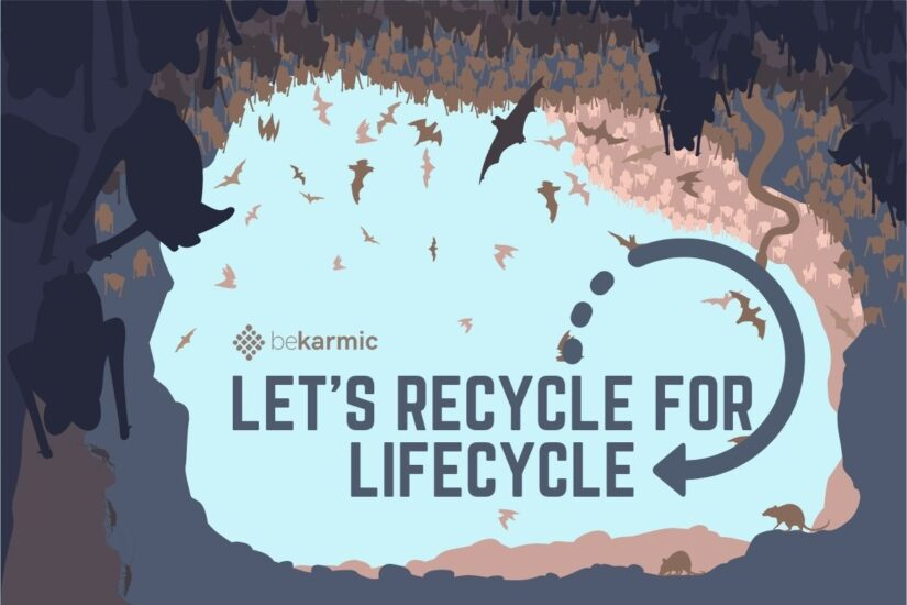Must-Know Things About Recycling
