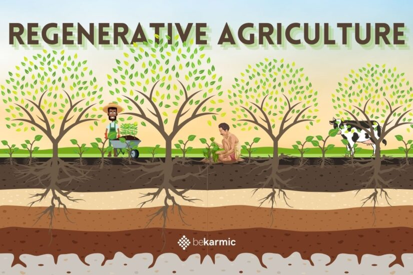 Regenerative Agriculture is the Sustainable Future