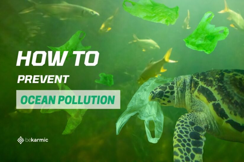 How to Prevent Ocean Pollution